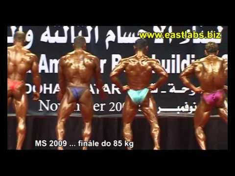v2492-ifbb-ms2009-doha-do85kg-1