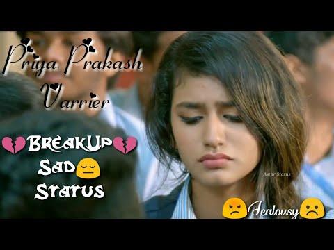 💔Breakup Status💔Priya Prakash Roshan Abdul Lovers Day Breakup Cute Girl Jealous WhatsApp Status,