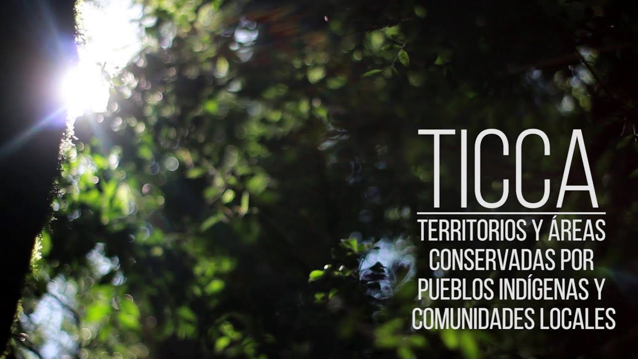Encuentro TICCA FAUBA