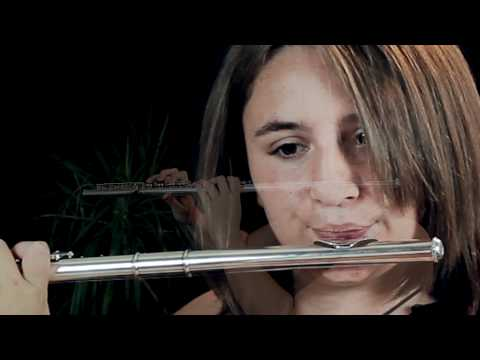 Lord of the Rings - In Dreams - Flute