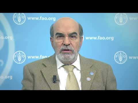 FAO Director-General Addresses The 17th Session Of The UN Permanent Forum On Indigenous Issues