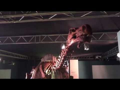 """Adelanto de la segunda temporada de """"El Dinozoico"""""""