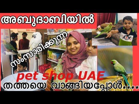Pet Shop Malayalam | Talking Parrot In Abudhabi UAE | Pet Sh
