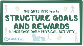 Insights into how to structure goals and rewards to increase daily physical activity thumbnail