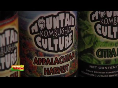 Virginia Farming: Mountain Culture Kombucha