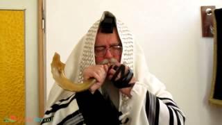 ショファー ショファー は、ユダヤ教の宗教行事で用いられる、角ででき...