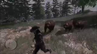 Red Dead Redemption (WILD BEAR CHASE)