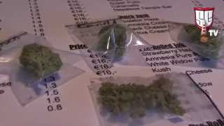 Newest Coffeeshop in Amsterdam: The Old Church Coffeeshop - Smokers Guide TV Amsterdam