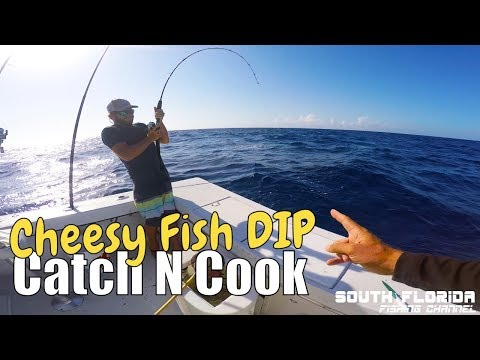 Fishing problems on a Key Largo wreck | CHEESY Fish Dip catch n cook