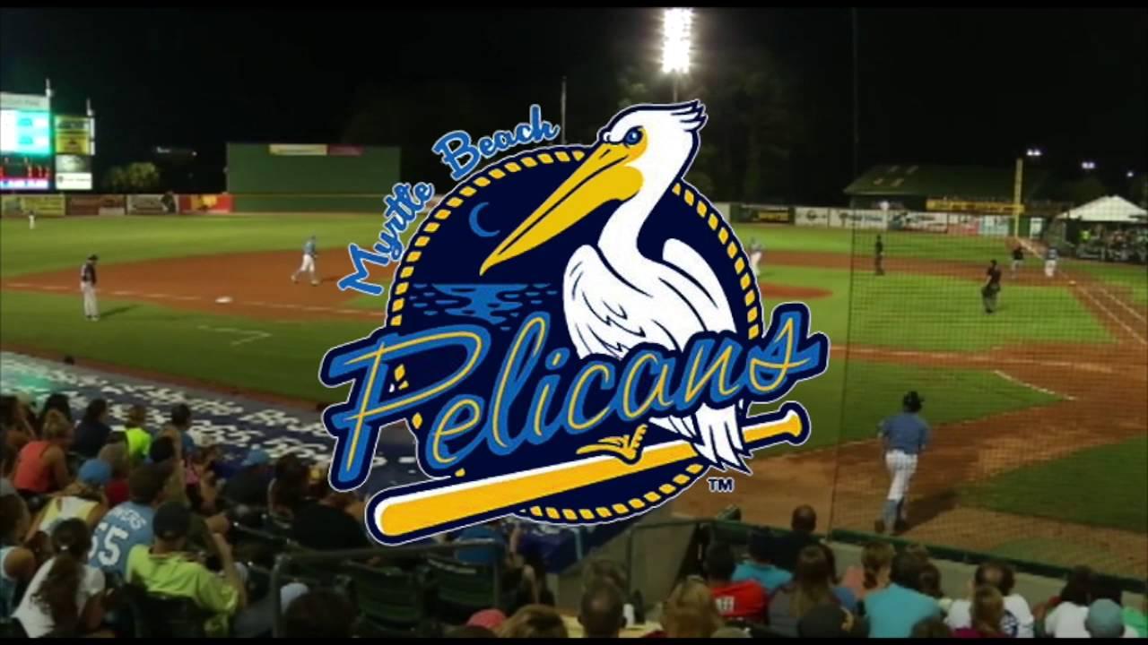 Myrtle Beach Pelicans - Best Sports Attractions in Myrtle Beach!