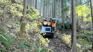 MST 300VDL Forwarder на лесозаготовке