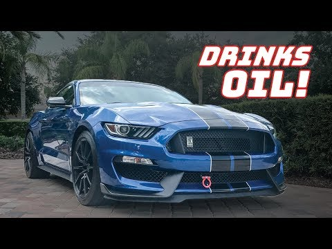 GT350 OIL CONSUMPTION! How BAD is it?
