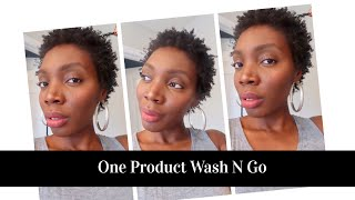One Product Wash n Go ||Short TWA|| Lannie Bass