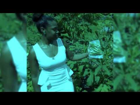 LIBERTY HAITI TRADING