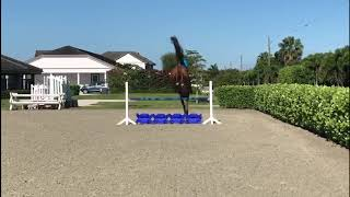 At Home with Glenbeigh Farm | Serpentine Exercises | Show Jumping Training Tips