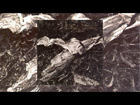 David Sylvian & Holger Czukay / Plight & Premonition (Full Album)