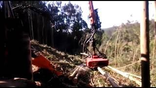 Procesadora, grapa forestal con rodillos y sierra by