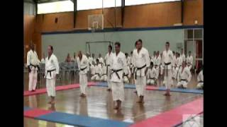 Goshin Training at Watanabe Shihan's 30th Anniversary