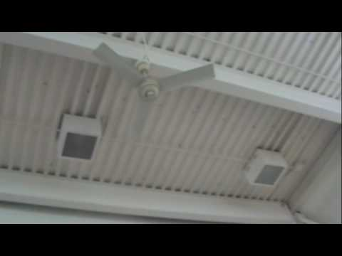 Two Dayton Leading Edge Industrial Ceiling Fans Youtube