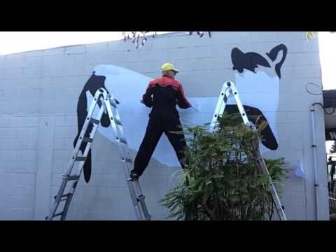 Painting a Mural to Bic Runga.