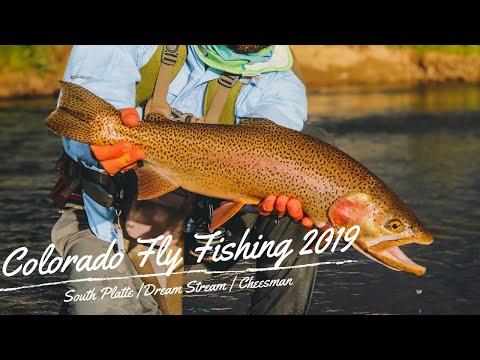 Colorado Fly Fishing 2019   South Platte River   Dream Stream   Cheesman Canyon