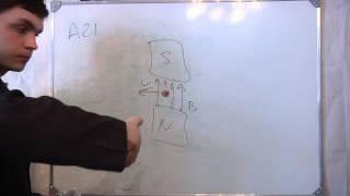 ЕГЭ физика А21 магнитные явления 2012. Видео урок.(ЕГЭ физика А21 магнитные явления 2012. Видео урок. Протон p, влетевший в зазор между полюсами электромагнита,..., 2012-03-27T20:31:11.000Z)