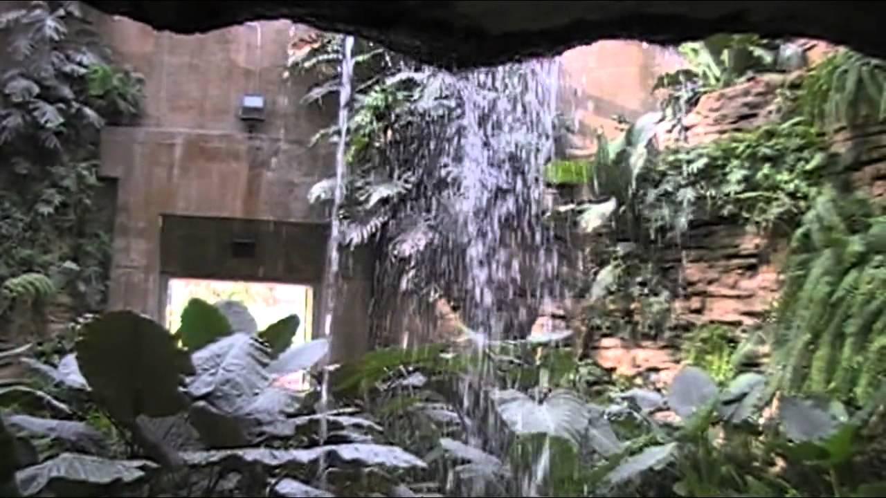 San Antonio Local Botanical Gardens