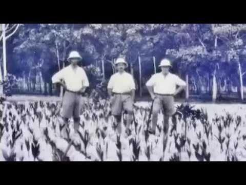 Malaysian Indian History