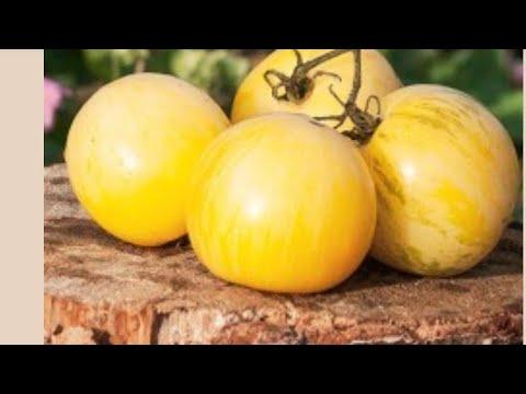 Семена томатов от коллекционеров. Кто, как, что, почём