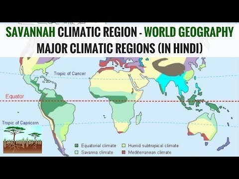 Savannah Climatic Region - World Geography Major Climatic Regions (in Hindi)