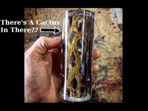 Casting Cholla Cactus Skeleton In Clear Resin