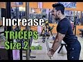3 Easy Tips for BIG TRICEPS  100% GUARANTEED