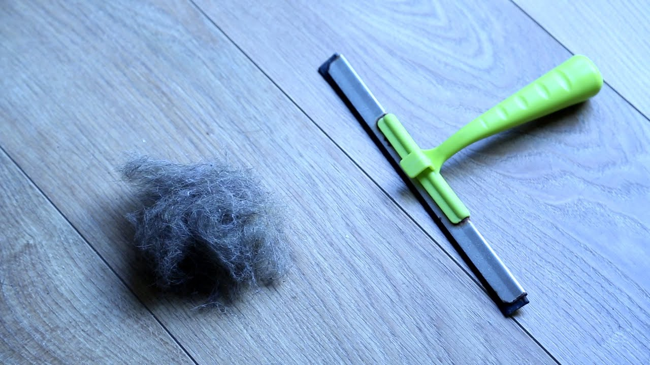 Remova pelos de animais e cabelos de seus móveis e carpete com um rodo.