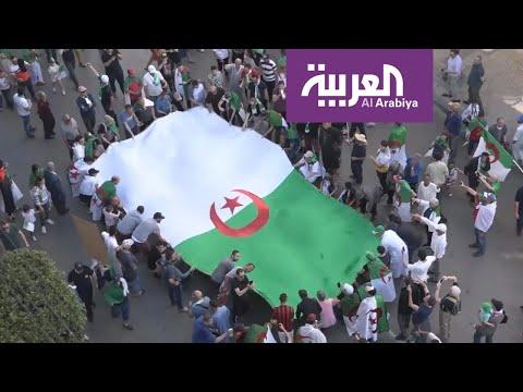لجنة الوساطة والحوار الجزائرية تشرع في توجيه دعوات للأحزاب المعنية بالحوار  - نشر قبل 3 ساعة