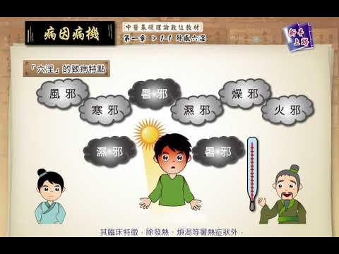 5 中醫基礎理論 病因病機