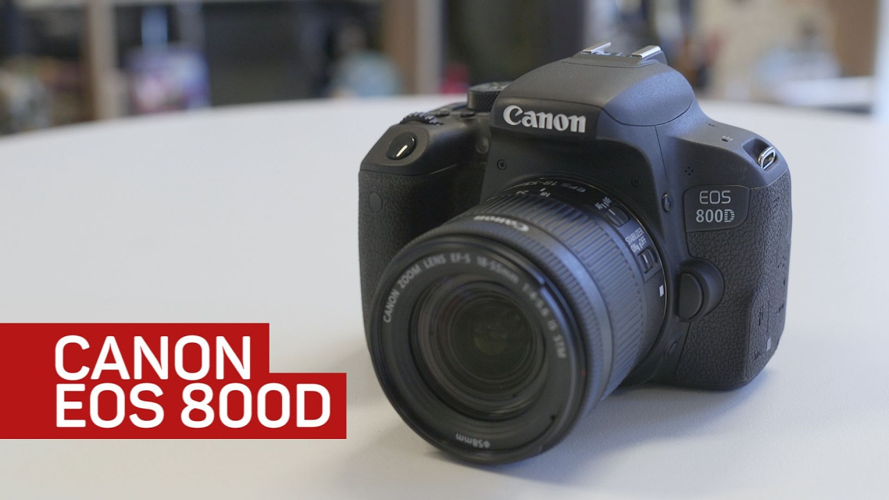 New Release From Canon: EOS Rebel T7i With Stunning Autofocus