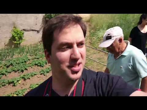visiting a farm in Llica D'Amount in Barcelona, Spain