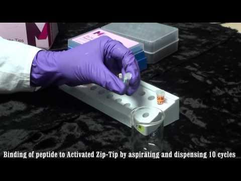 VPL Module 2 video Zip-Tip