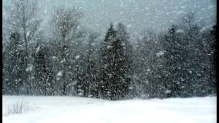Wind sound effect 2 - snow storm