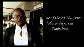 Invest in Zimbabwe.Tobacco golden leaf