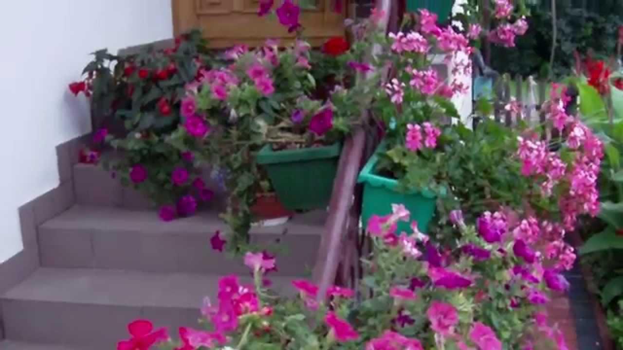 Sawne Pikne Ogrody KwiatoweWiele Odmian Kwiatw YouTube