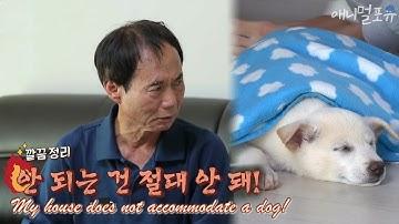 [CC] 개 키우기를 반대하던 할아버지가 아무도 없을 때 보인 행동, KBS 181128 방송
