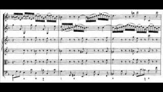 J.S. Bach - BWV 1043 - (2) Largo ma non tanto d-moll / D minor