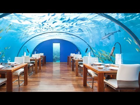 Top 10 Restaurants You Won't Believe Actually Exist ❦❦❦