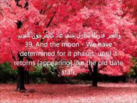 sheikh-salah-bukhatir-(سورة-يس)--surah-yasin-صلاح-بو-خاطر-(arabic+-translation)!