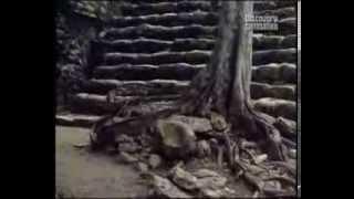 Древние цивилизации:  Ацтеки и майя