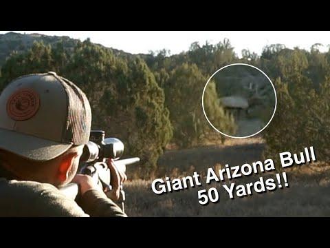 Arizona Elk Hunting – GIANT BULL DOWN!