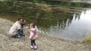 Exploring Mosquito Lake