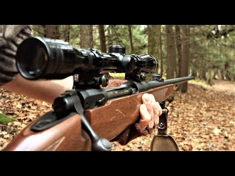 How To Hunt Whitetail Deer - Hunting Rifle Buck Season In Pennsylvania 2016