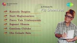 A tribute to PB Sreenivos Vol 3  | Telugu Hit Songs | Jukebox